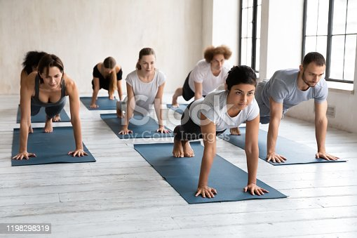 Diverse young people with female Indian instructor doing Push ups or press ups exercise at group lesson, practicing yoga in modern studio, standing in Plank pose, working out in yoga center