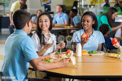 istock Diverse teenage friends eat lunch in school cafeteria 641510086
