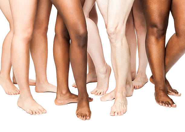 Diverse Women's Legs (Isolated on White) stock photo