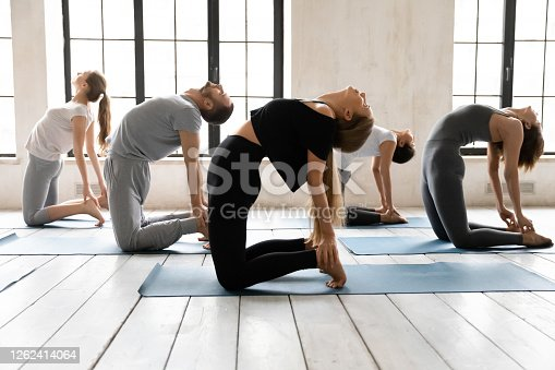 Side view diverse young sporty people standing on floor mat on knees, throwing head back, improving flexibility in Camel pose or stretching muscles in Ustrasana exercise at group yoga class indoors.