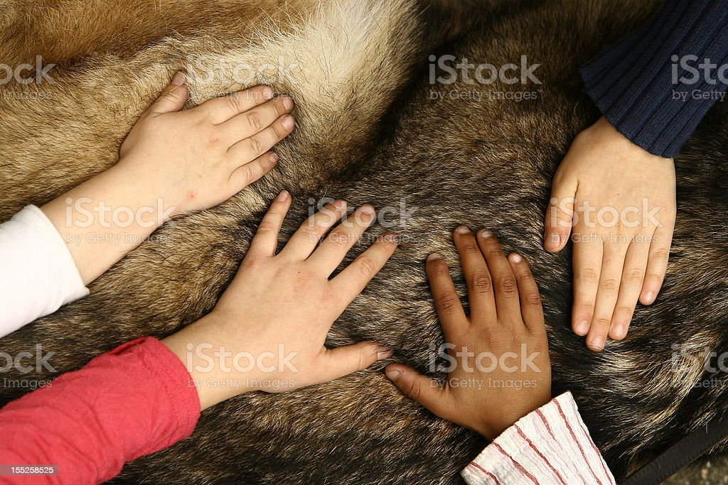 Diversity and Inclusiveness royalty-free stock photo