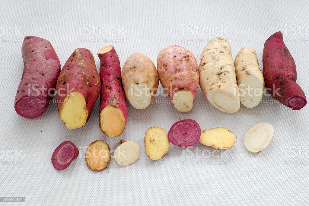 Diversity sweet potato on white background stock photo