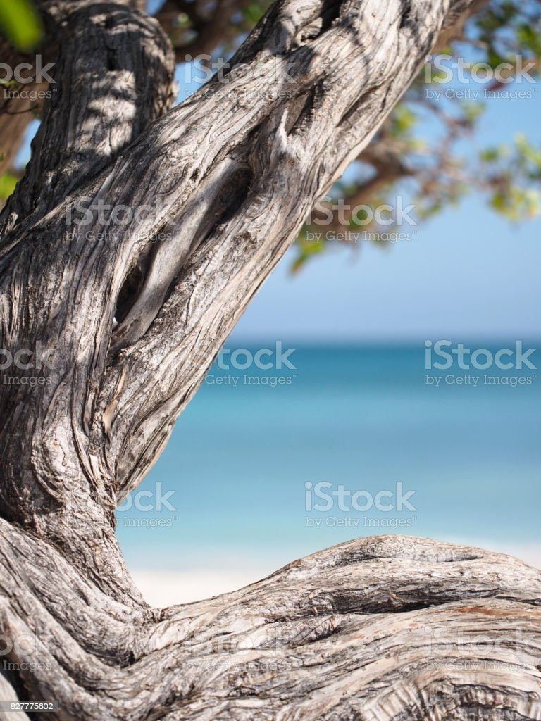 Divi Abstract stock photo