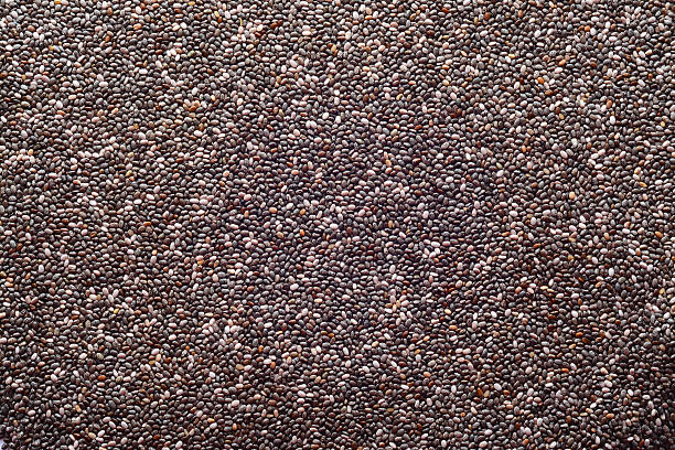 chia - chia seed stock photos and pictures