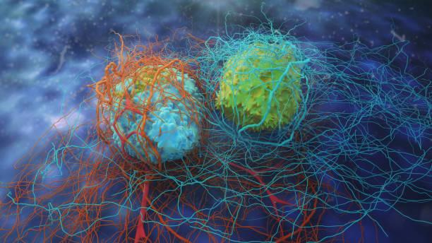 dividing cancer cells - mutazione genetica foto e immagini stock