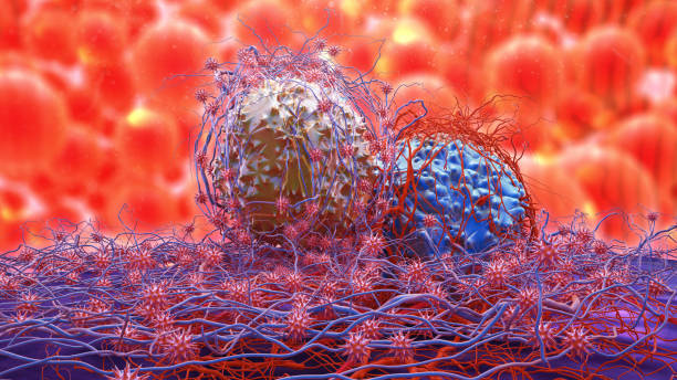 Dividing cancer cells stock photo