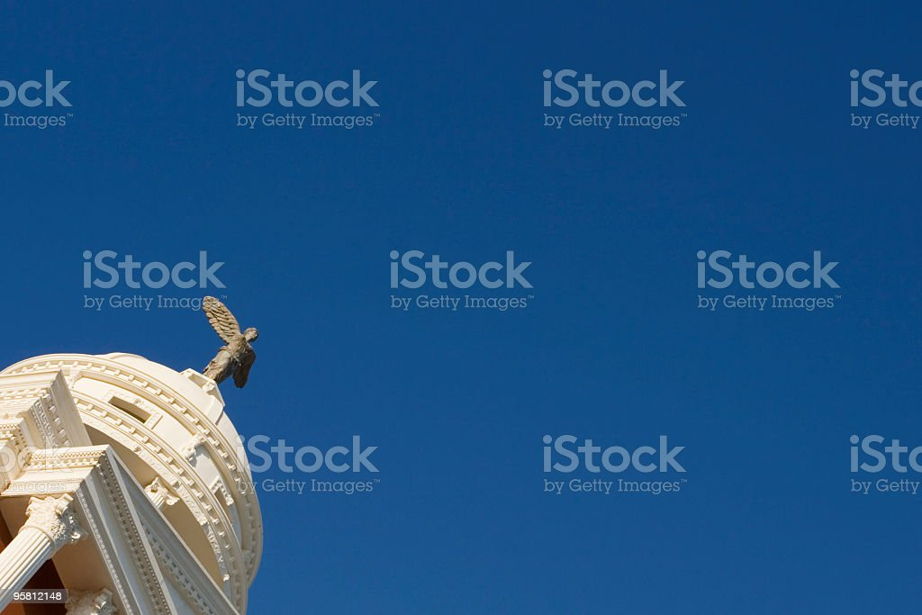 divine fly stock photo