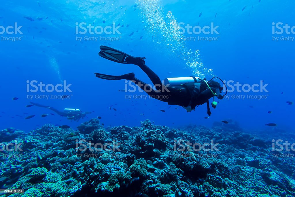 Diving Deep in Tiputa Pass, Rangiroa, French Polynesia stock photo