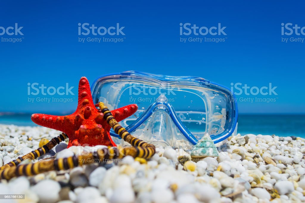 Diving mask, starfish and necklace by the shore - Royalty-free Animal Shell Stock Photo