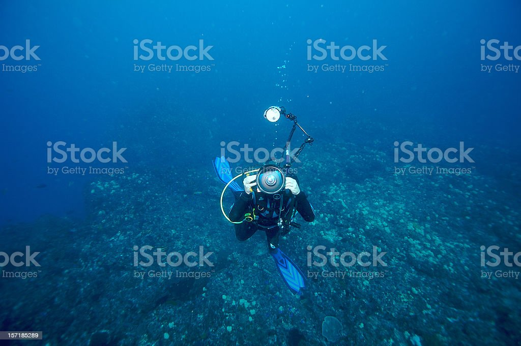 Diving Photographer royalty-free stock photo