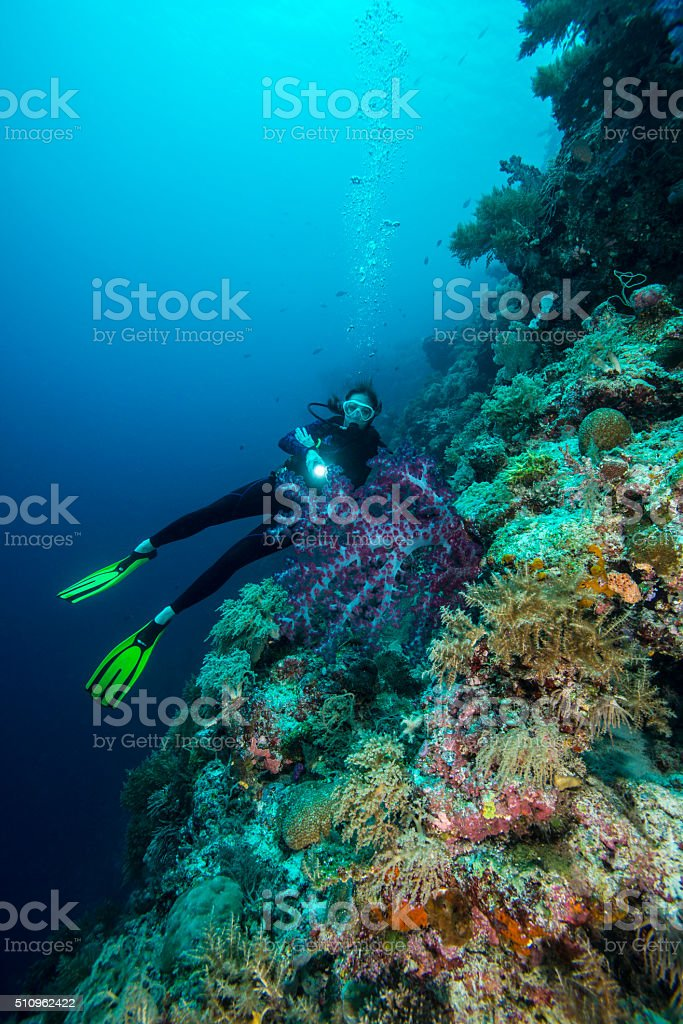 Diving the drop off's in Palau - Micronesia stock photo
