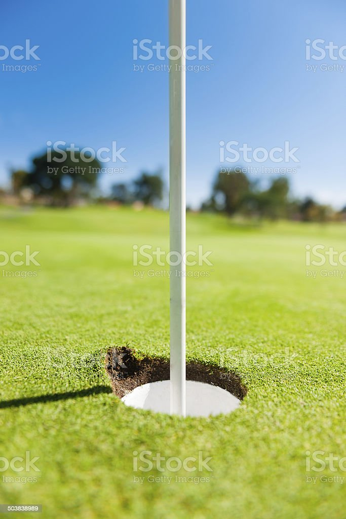 Hole in one! There is a divot on the side of the hole. For variations...