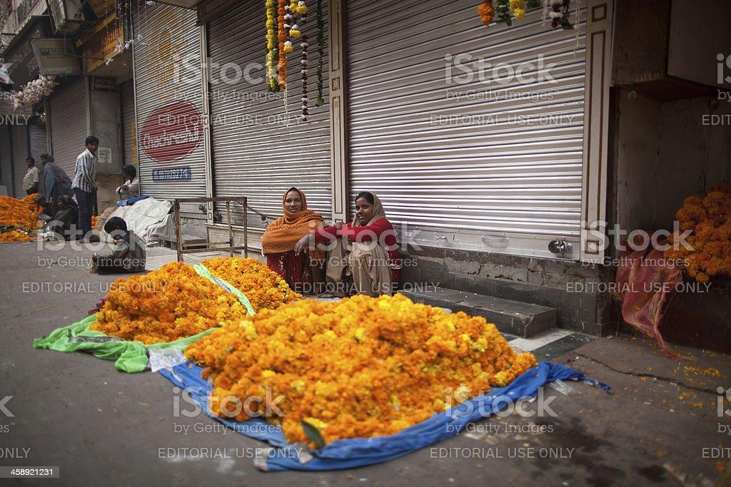 Diwali, New Delhi, India royalty-free stock photo