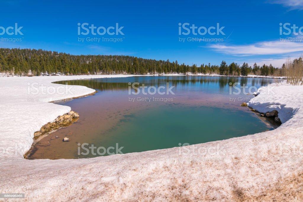 Dixie National Forest and Boulder Mountain, Cedar City, Utah, USA, North America Lizenzfreies stock-foto