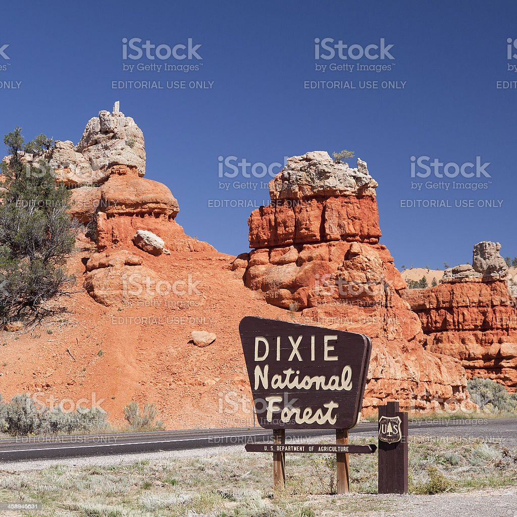 Dixie National Forest royalty-free stock photo