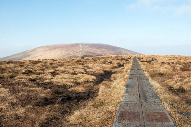 Djouce Mountain, Wicklow, Ireland stock photo