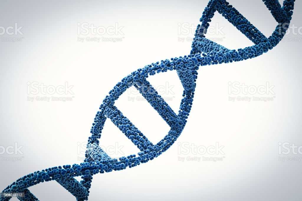 dna helix or dna structure stock photo