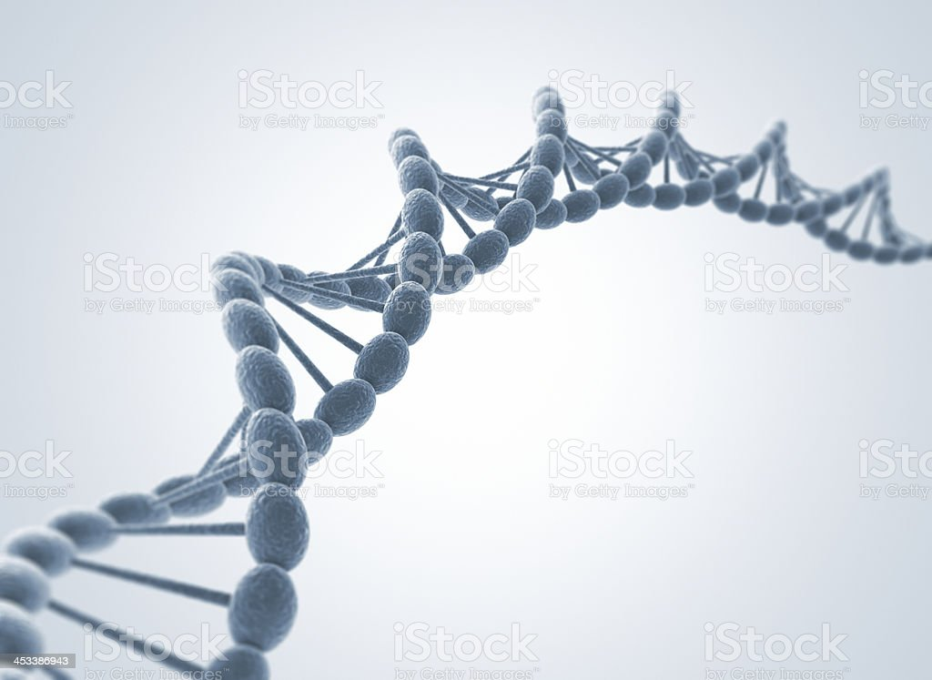 Dna model stock photo