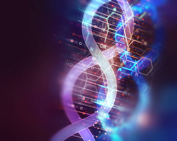 dna molecules on abstract technology background – Foto