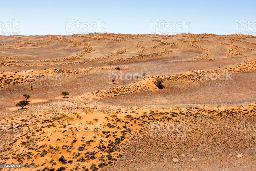 Dünenlandschaft der Namibwüste – Foto