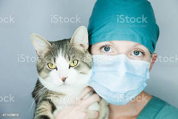 Do care of your animal picture id471429815?b=1&k=6&m=471429815&s=612x612&h=apmzhopxqhuyxq1zzbd41fsfqnmowgis90ssn8g8dry=