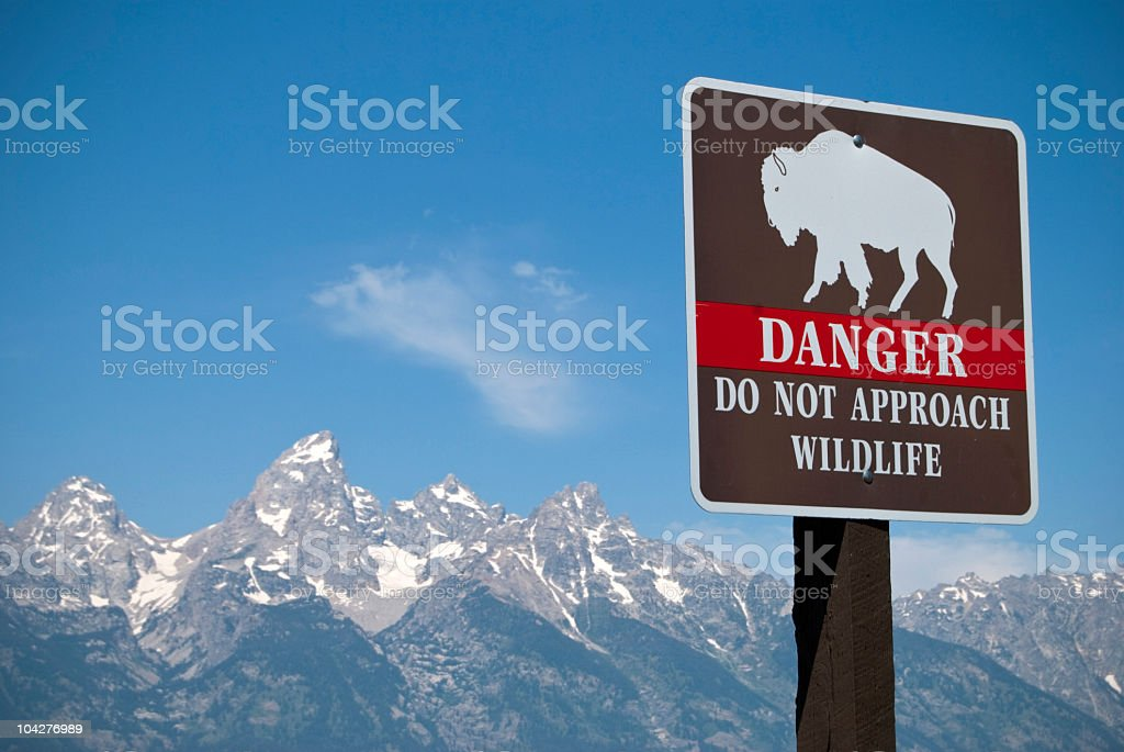 Do not approach wildlife road sign royalty-free stock photo