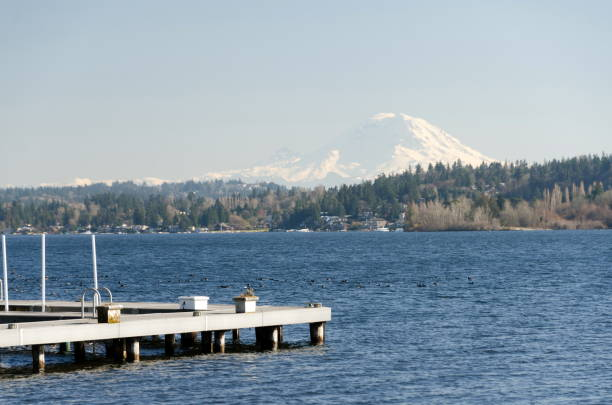 Docks in Medina  with Rainier mountain in the background. Bellevue stock photo