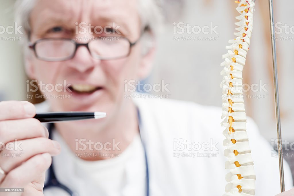 Doctor and spine royalty-free stock photo