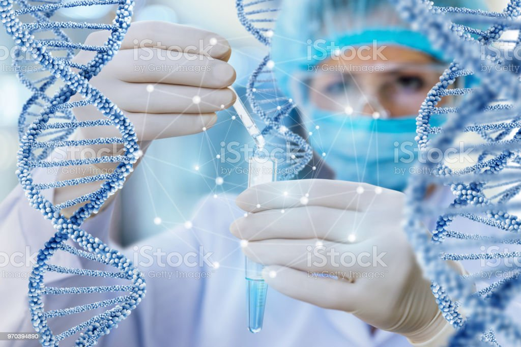 Doctor conducts the test and the study of DNA . stock photo
