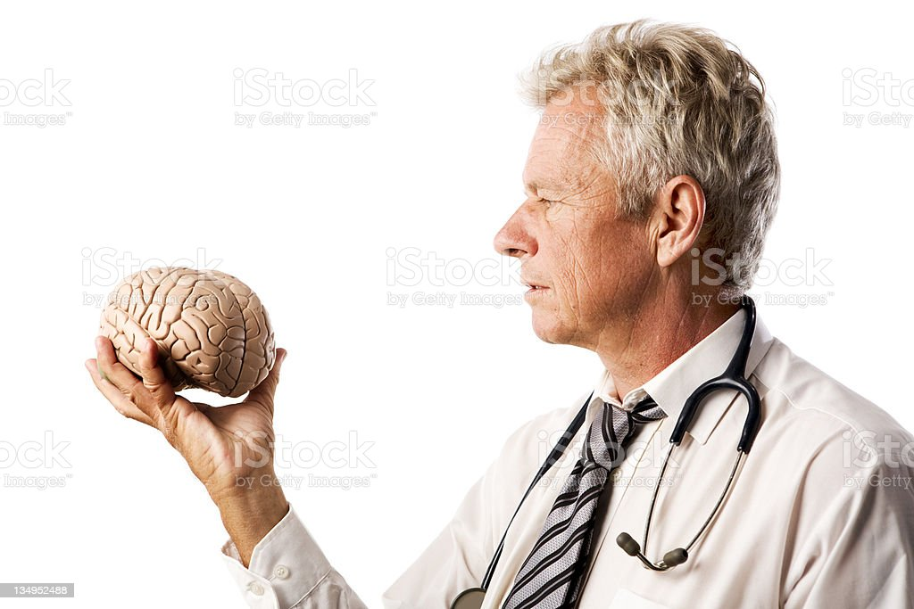 Doctor considering brain royalty-free stock photo