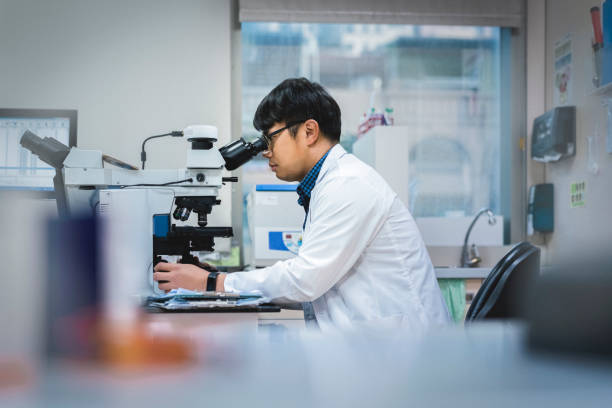 Doctor examining medical sample through microscope stock photo