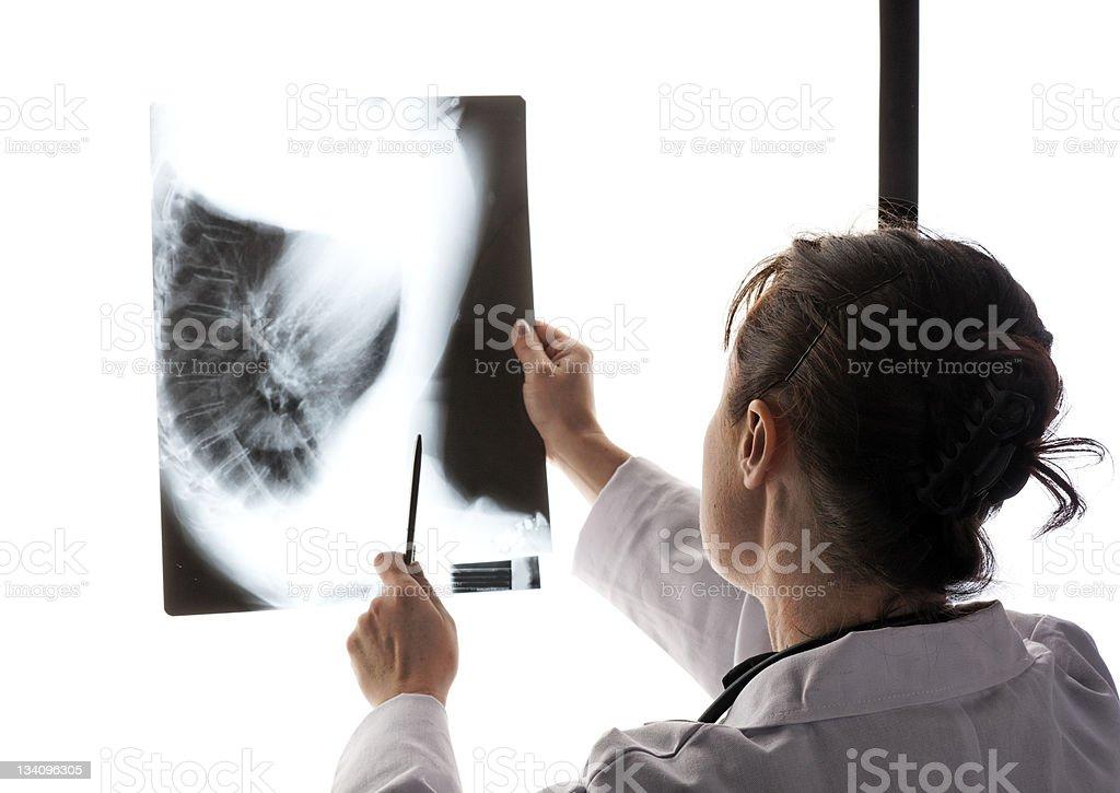 Doctor examining X-ray stock photo