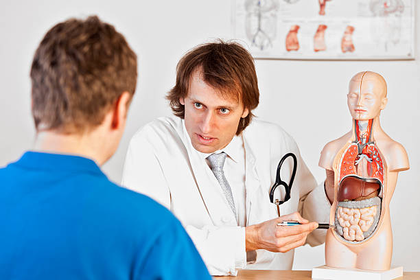 doctor explaining abdominal pain - human intestine stock photos and pictures