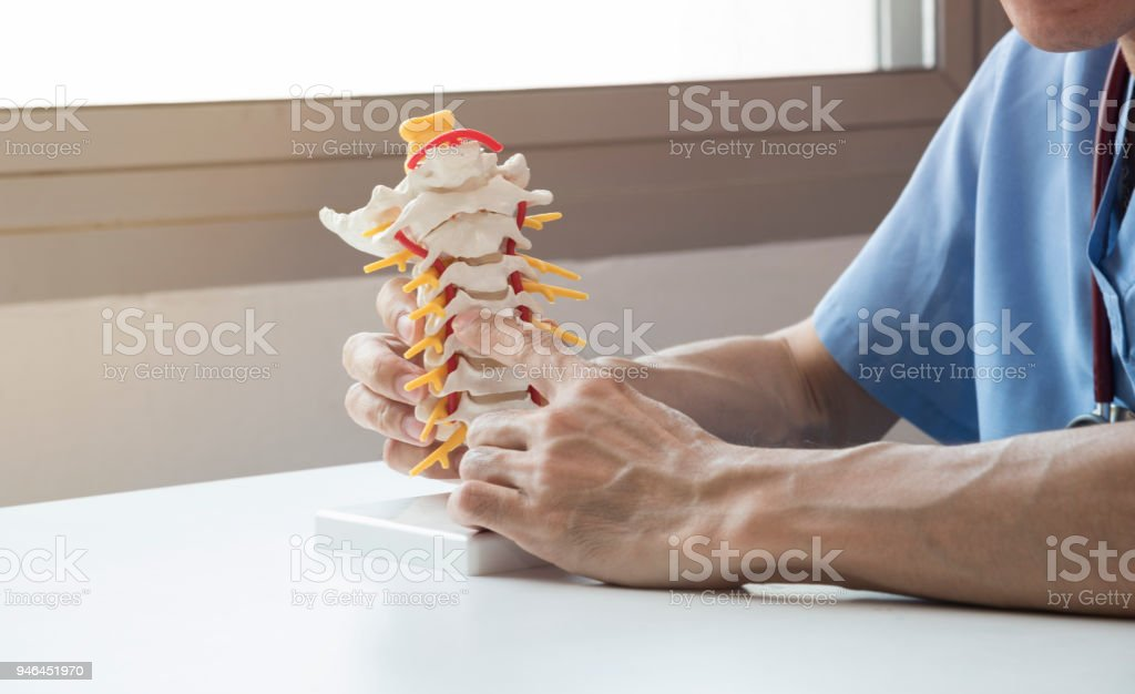 Doctor explaining about spine to the patient stock photo