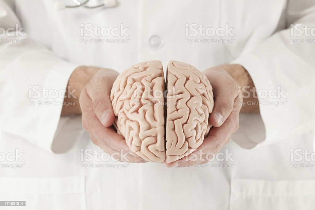 Doctor holding a brain - Royalty-free 20-29 Years Stock Photo