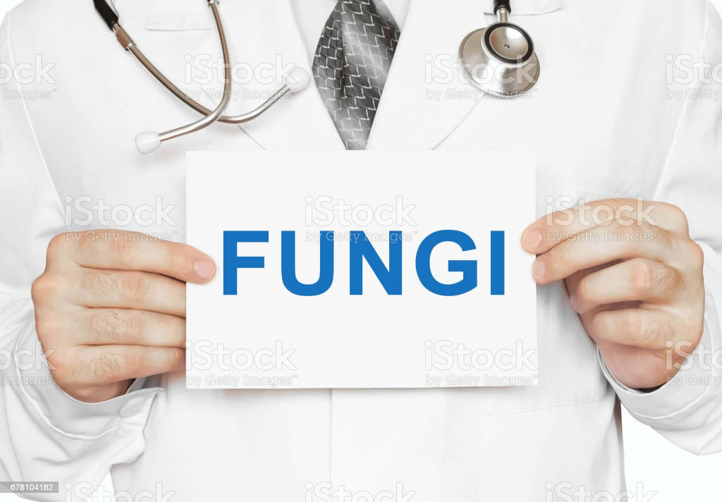 Doctor holding a card with Fungi, Medical concept stock photo