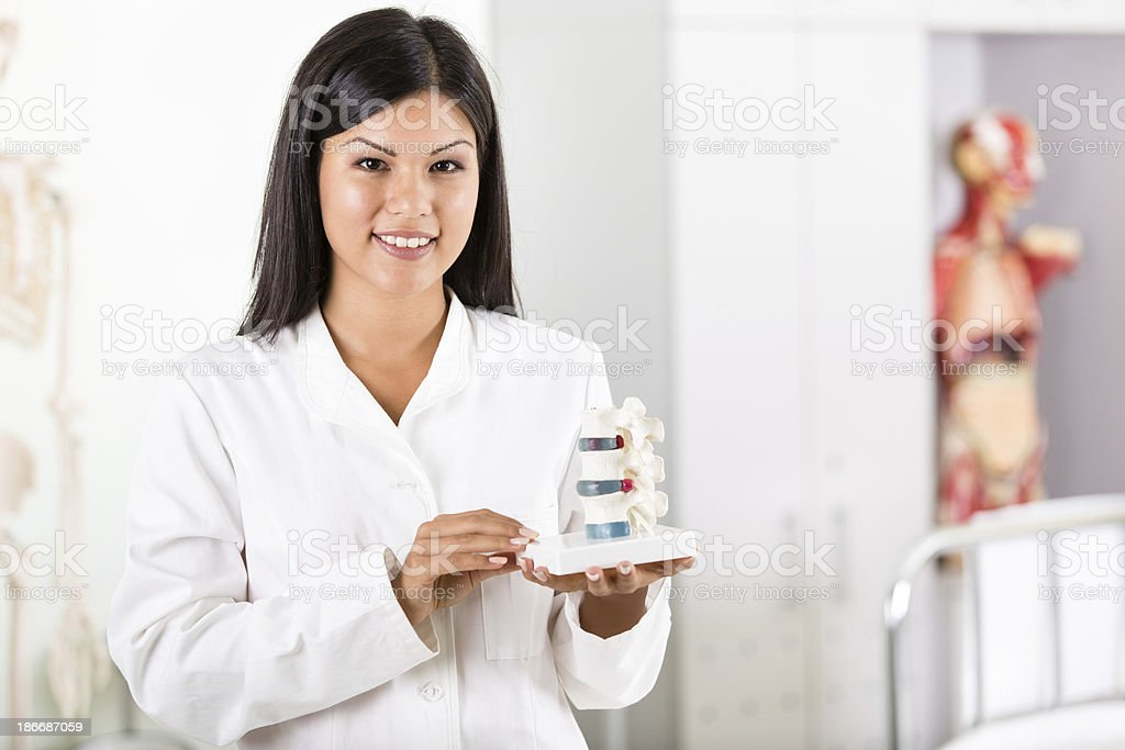 Doctor holding anatomical model of spine royalty-free stock photo