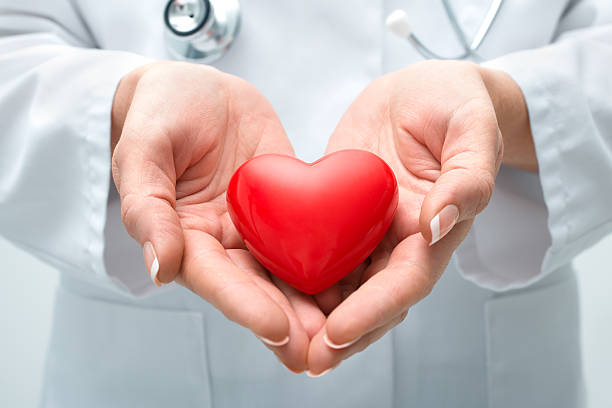 doctor holding heart - organ donation stock photos and pictures