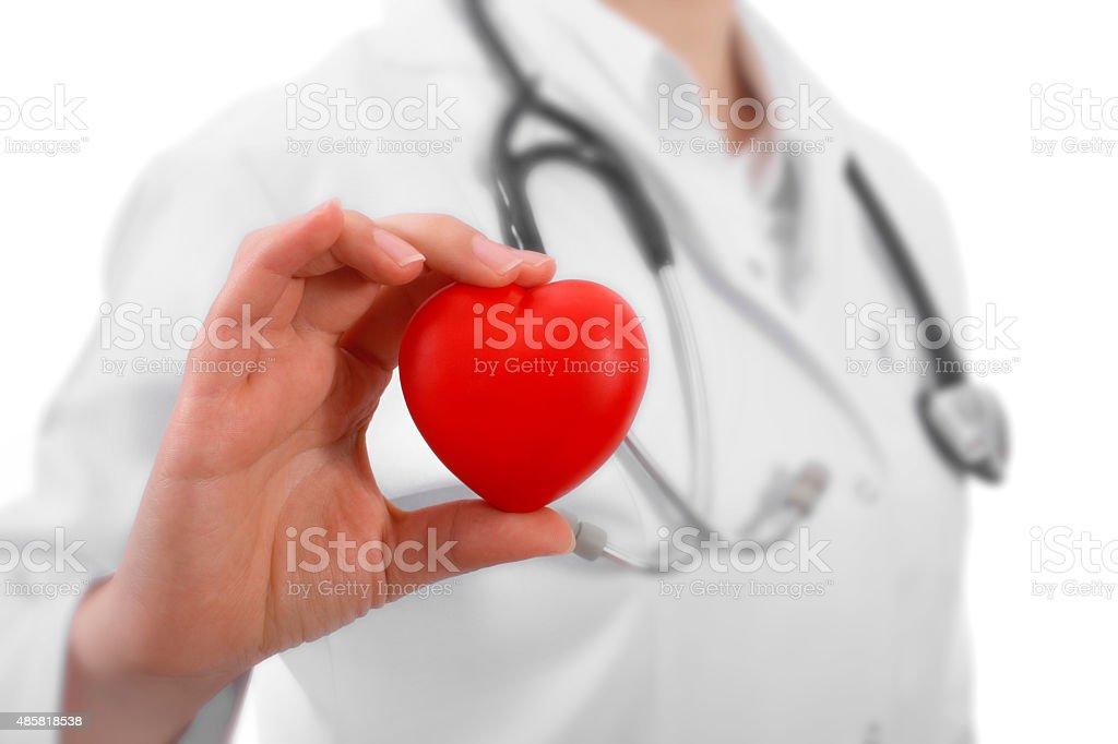 Doctor holding heart stock photo