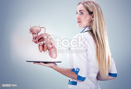 istock Doctor holding human organs ( penis) and tablet , gray background. 633687444