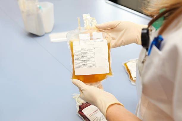 Doctor in  blood bank is holding bag  with white  cells stock photo
