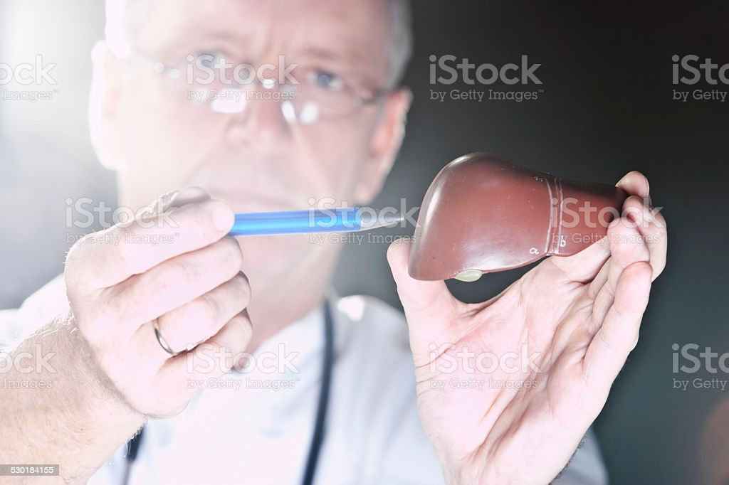 Doctor pointing at liver stock photo