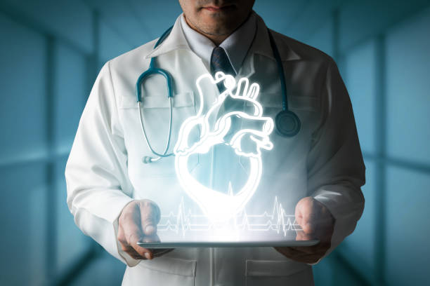 Doctor showing heart hologram from computer. stock photo