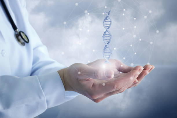 doctor shows a dna molecule . - genetic research stock pictures, royalty-free photos & images