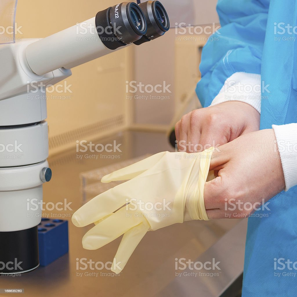 doctor wearing a surgical glove stock photo