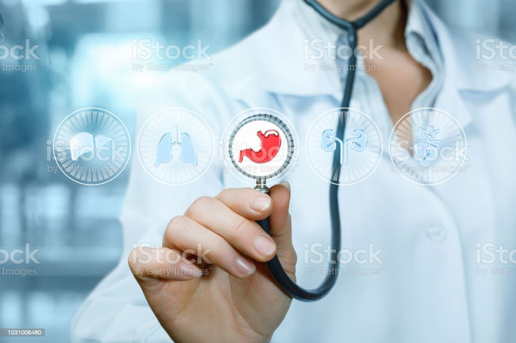 Doctor Will Diagnose The Internal Organs Stock Photo More Pictures