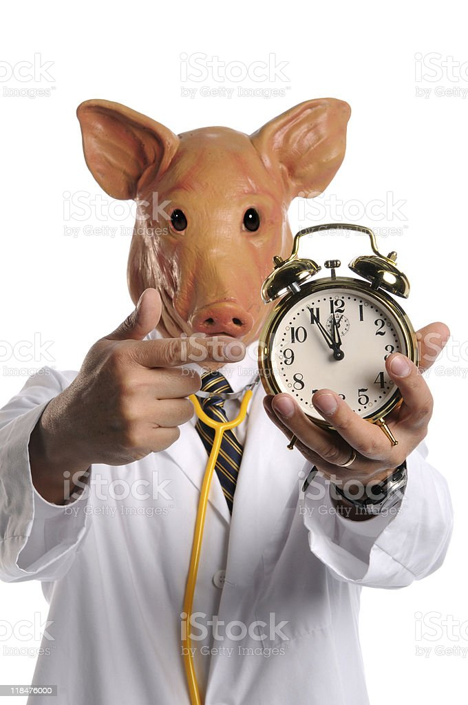 Doctor With Pig Head Pointing at Clock royalty-free stock photo
