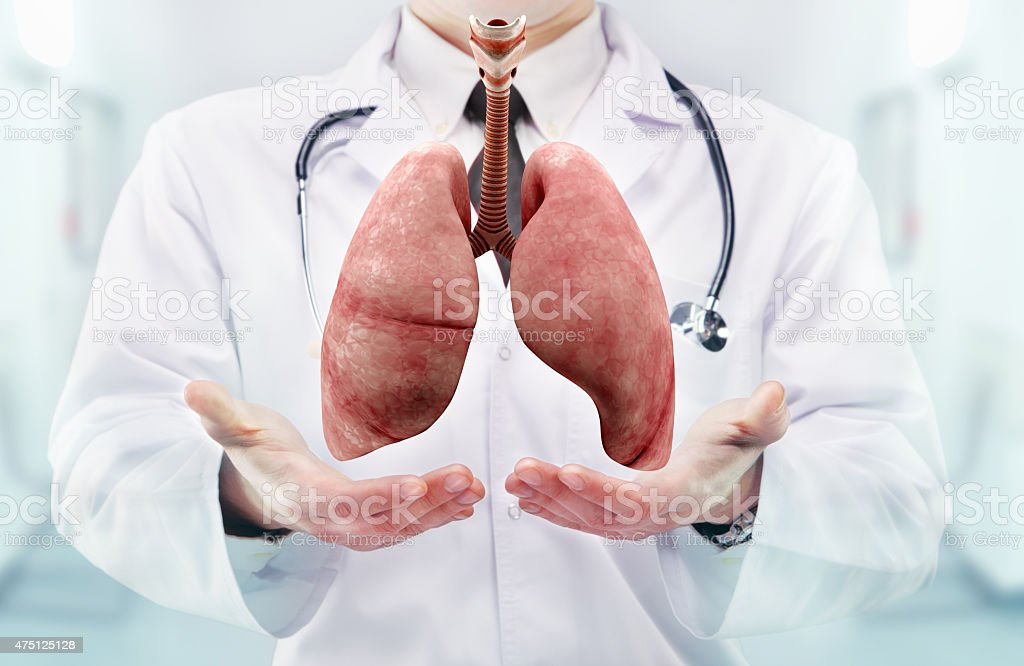 Doctor with stethoscope and lungs on the  hands stock photo