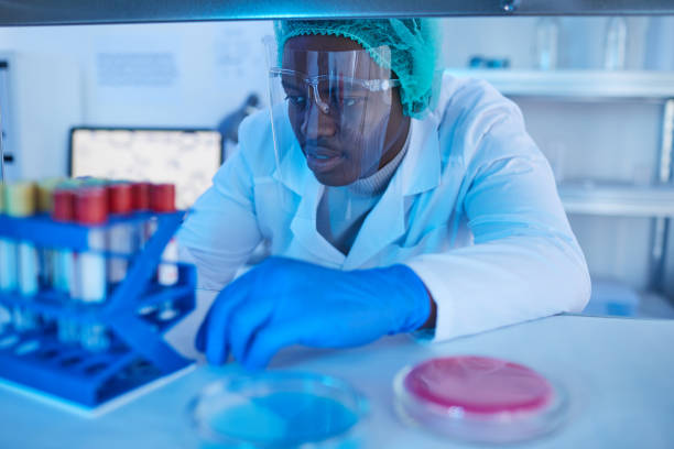 Doctor working with medical analysis African doctor sitting at the table and examining medical samples in test tubes in medical lab medical research stock pictures, royalty-free photos & images