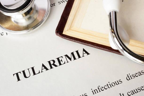 Tularémie - Photos et Images Libres de Droits - iStock